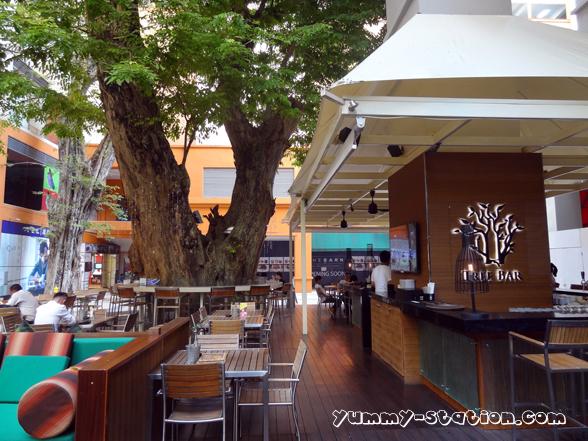 tree bar 01